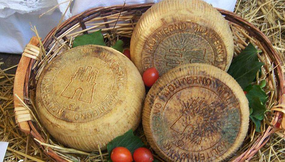 Canestrato-di-Moliterno I 10 prodotti tipici della Basilicata da provare almeno una volta in tavola